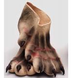 Nohy - drápy - velké