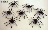 Pavouk 7 x 7 cm