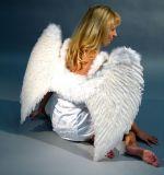 Křídla péřová - 65x80 cm
